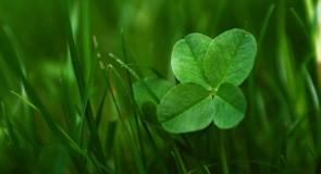 Comment attirer la chance à vous